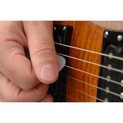 Planet Waves Nylflex Guitar Picks, 100 pack, Light