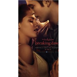 twilight saga breaking dawn part 1 - DVD