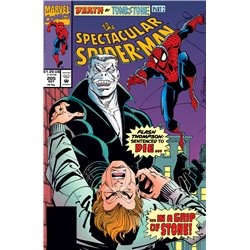 Peter Parker Spider-Man No. 205 Year 1993