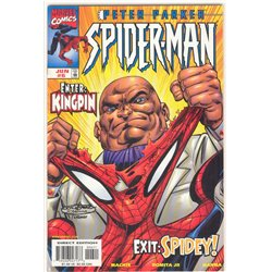 Peter Parker Spider-Man No. 6 Year 1999